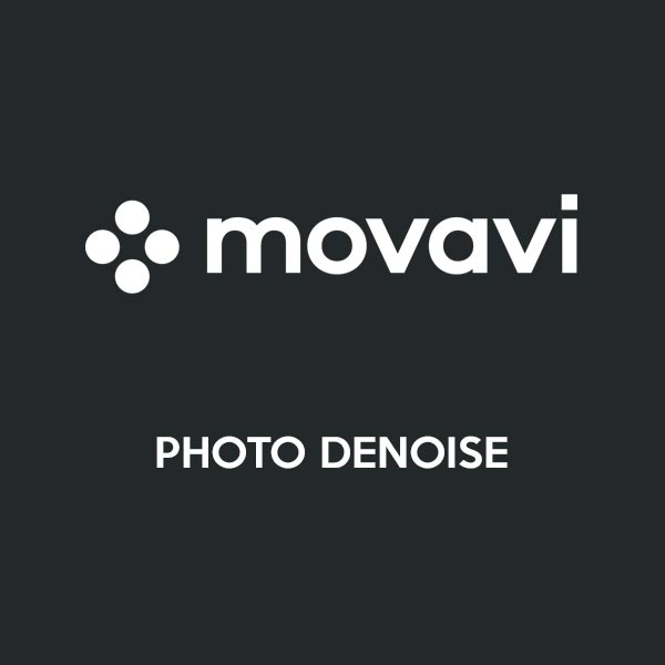 Movavi-Photo-DeNoise Primary